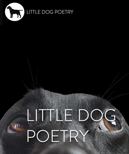 Little Dog Poetry