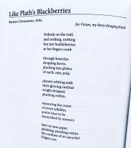 Like Plath's Blackberries